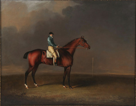 Henry Bernard Chalon, Sir David, a Bay Racehorse owned by H. R. H. The Prince of Wales, with Samuel Chisney up, on Newmarket Heath