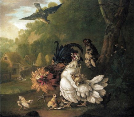 Pieter Casteels, An assembly of farmyard fowl and other birds