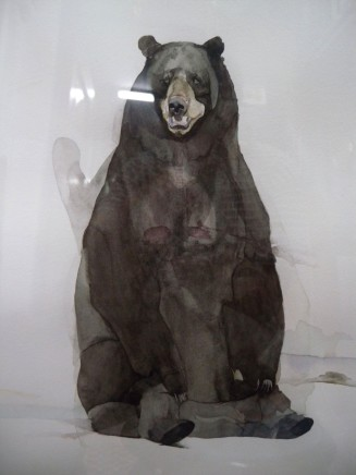 Halley Cheng 鄭哈雷, Bear with Broken Lungs 爆肺的熊, 2010