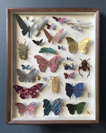 Helen Ward, Entomology Case 7, 2019