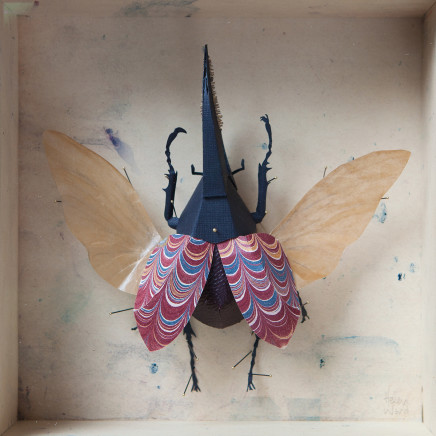 Helen Ward, Red Hercules Beetle, 2019