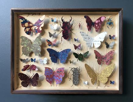 Helen Ward, Entomology Case 10, 2019