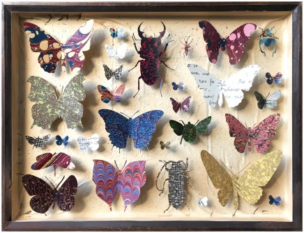 Helen Ward, Entomology Case 10, 2019