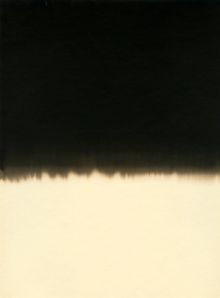 Alison Rossiter, Gevaert Ortho Brom, exact expiration date unknown, ca. 1950's (D), processed 2011