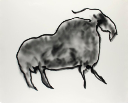 Alison Rossiter, Light Animal No. 9, 2000