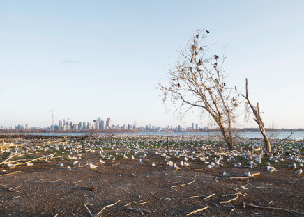 Robert Burley, Tommy Thompson Park #2, 2014