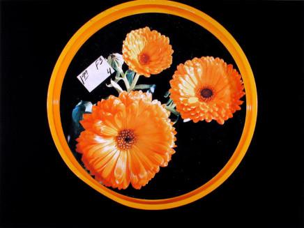 William Eakin, Night Garden 1, 2001