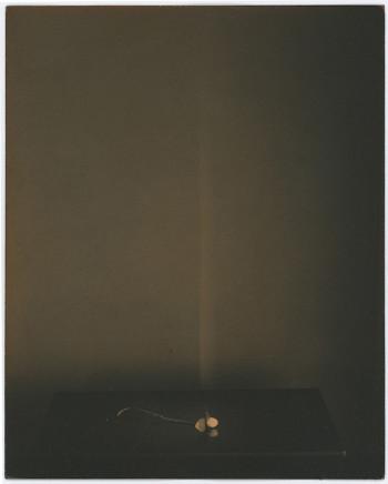 Yamamoto Masao, # 483, 1987-2018