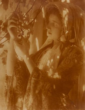 Minna Keene, Untitled, circa 1910
