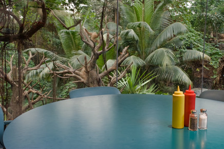 Dana Fritz, Condiments, Lied Jungle, 2007