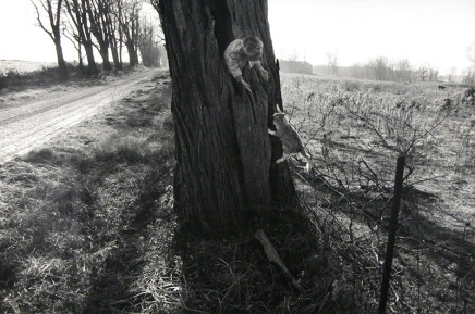 Larry Towell, Naomi in Hollow Tree with Cat, Lambton County, Ontario, Canada, 1990