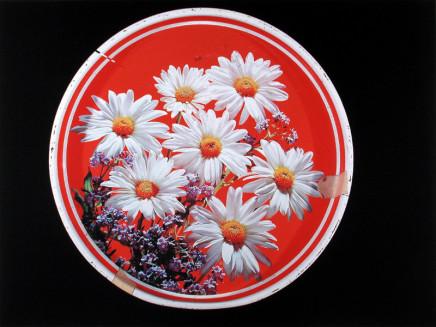 William Eakin, Night Garden 25, 2001