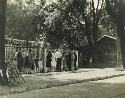 Charles Devenish Woodley, Riverdale Zoo, Toronto
