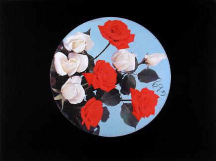 William Eakin, Night Garden 22, 2001