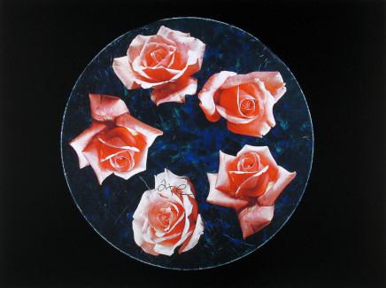 William Eakin, Night Garden 5, 2001