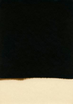 Alison Rossiter, Darko Rough (Sears Roebuck), exact expiration date unknown, ca. 1930's (B), processed 2011