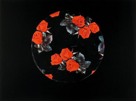 William Eakin, Night Garden 54, 2001