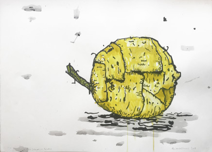 Martin Poppelwell, Old Lemon in Studio, 2018
