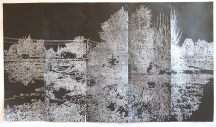 Show #4: Landskin by Fiona Van Oyen
