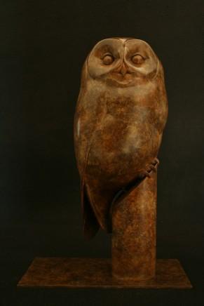 Adam Binder, TAWNY OWL