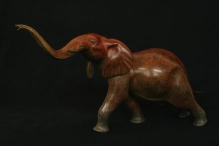 Adam Binder, ELEPHANT