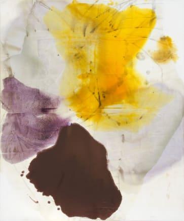 Pale Morpho, 2011  Dirk De Bruycker  Asphalt, cobalt drier, gesso and oil on cotton duck canvas  84 x 72 inches (213.4 x 182.9 cm)