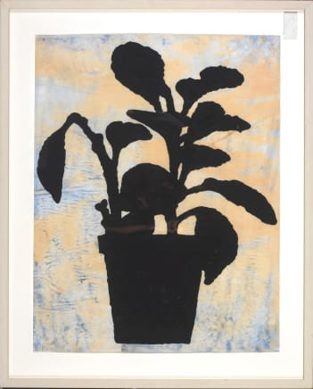Untitled (Plant), 2006