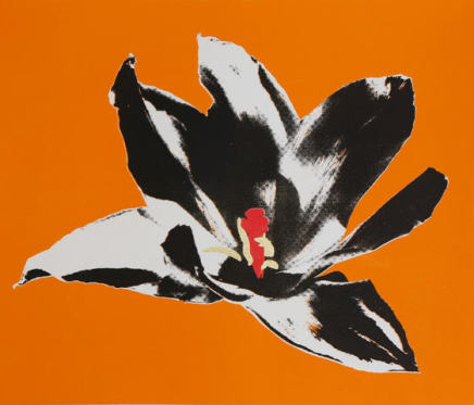 Anne Gournay, Flower Power, Orange is the new Black