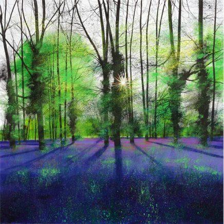Paul Evans, Sunburst and Bluebells