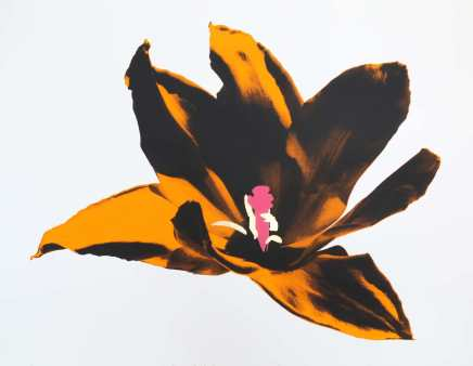 Anne Gournay, Just Because I Like Them so Much, Orange and Pink