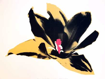 Anne Gournay, Just Because I Like Them so Much, Gold and Pink