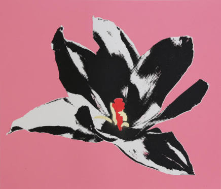 Anne Gournay, Flower Power, Pink is the new Black