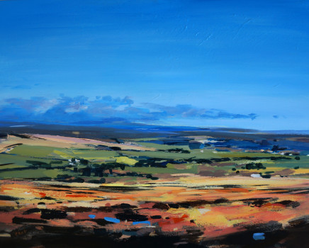 Colin Cook, North York Moors - late summer