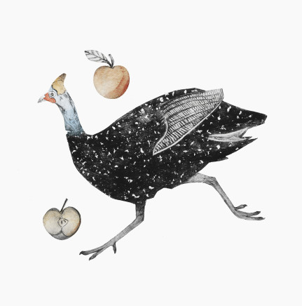 Beatrice Forshall, Guinea Fowl