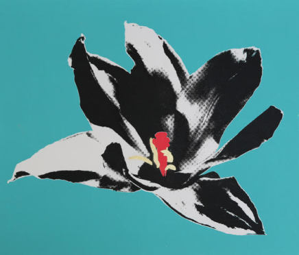 Anne Gournay, Flower Power, Turquoise is the new Black