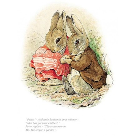 Beatrix Potter, Peter, Who Has Got Your Clothes?
