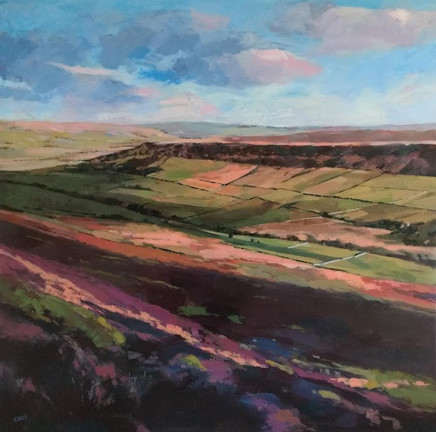 Colin Cook, Late afternoon at Littlefryup Dale, North Yorkshire