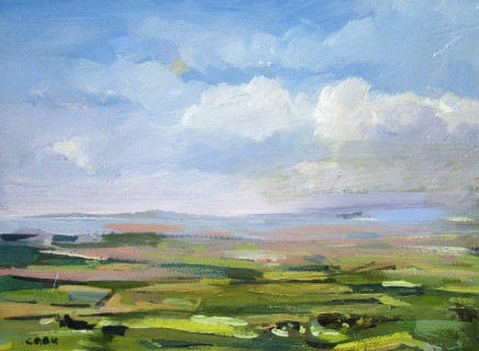 Colin Cook, View from the Cleveland Hills