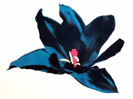 Anne Gournay, Just Because I Like Them so Much, Dark Blue