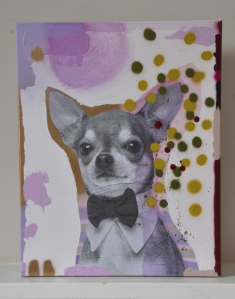Jimmy Smith, Pickles (Chihuahua)
