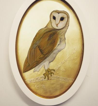 Sally-Ann Johns, Barn Owl