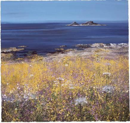 Paul Evans, Coastal Flowers