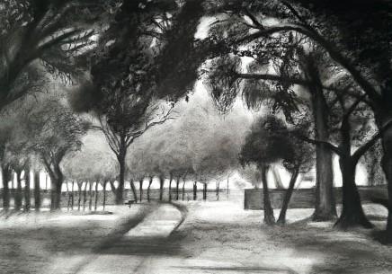 Tracey Levett, Misty Morning in Carss Park, 2020