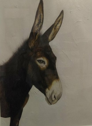 Karen Barbouttis, The Donkeys of Psarou, Mykonos, 2018