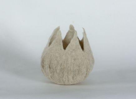 Denise Lithgow, Natural White Flower Pod
