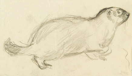 "Mario Sironi, Small marmot (study for an illustration for the volume ""Storia di un micio bigio, di una gallina nera e di una marmottina prigioniera"" by Pina Gonzales, 1923"