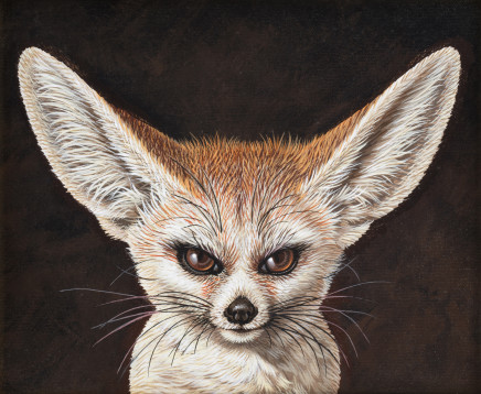 Saverio Polloni, Fox