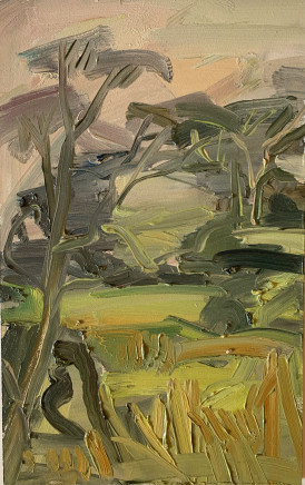 Lindy Guinness, Trees in Conversation, Clandeboye Forest