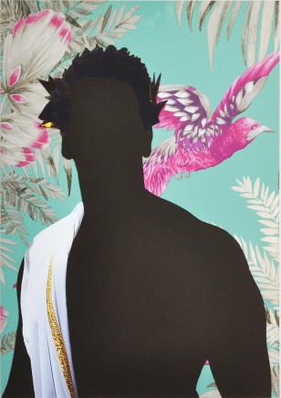 Nicola Green, Carnival, Birds of Paradise, 2016