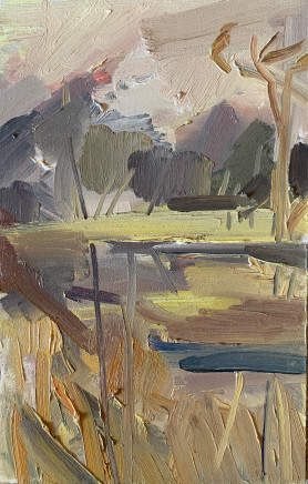 Lindy Guinness, Wetland between Sky and Water